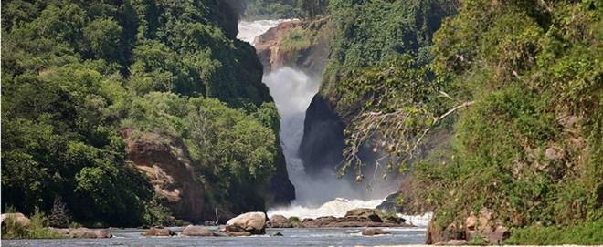 Murchison falls .