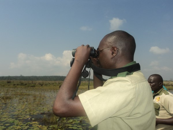 Birding  with BBC World at Mabamba