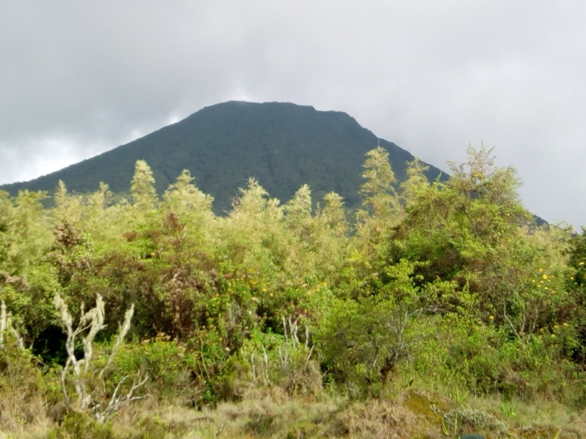 HIKING MOUNT GAHINGA- THE SMALLEST OF THE VIRUNGA MOUNTAINS